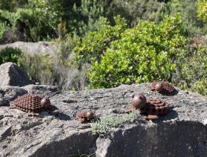 des sculptures metalliques posées sur un rocher