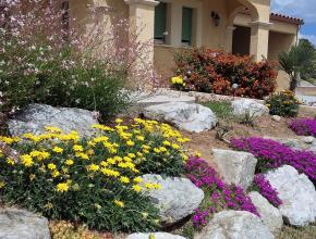 jardin concours aude fleurie