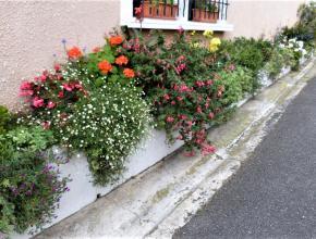 résidence concours aude fleurie
