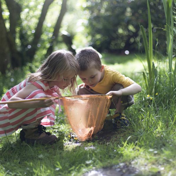 Des enfants cherchant à pêcher avec leur epuisette