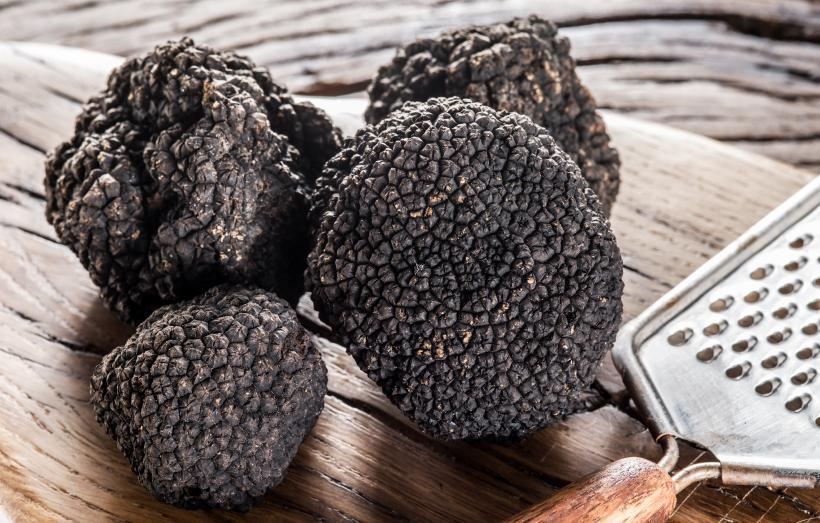 Truffes noires de la marque Pays Cathare