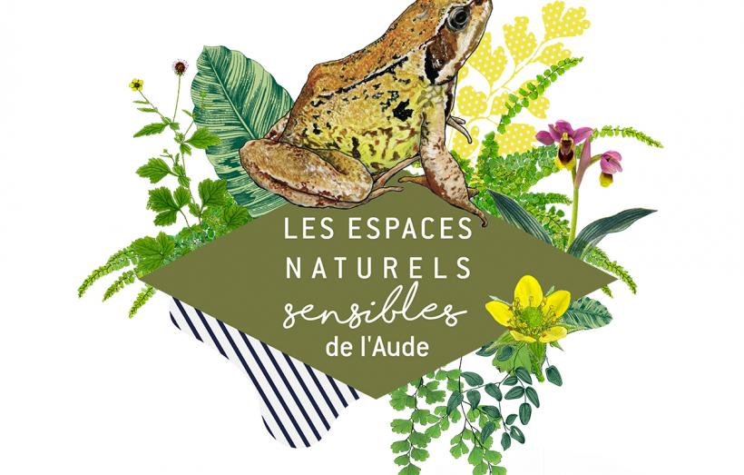 ENS-grenouille