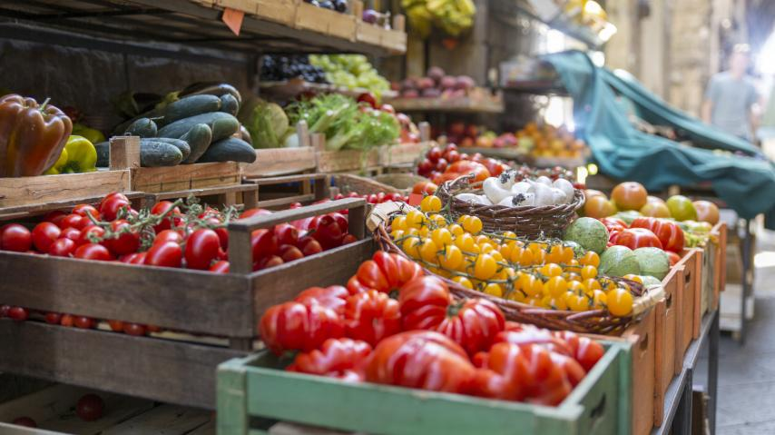 Marché des producteurs audois, fruits et légumes de saison