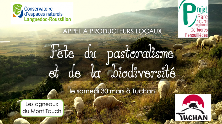 fete-pastoralisme-Tuchan